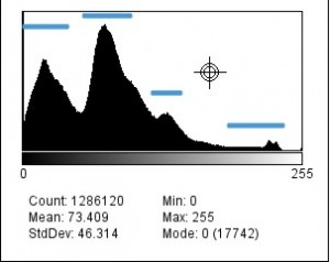 B&w histogram of the BlueORgreenANDred composite image
